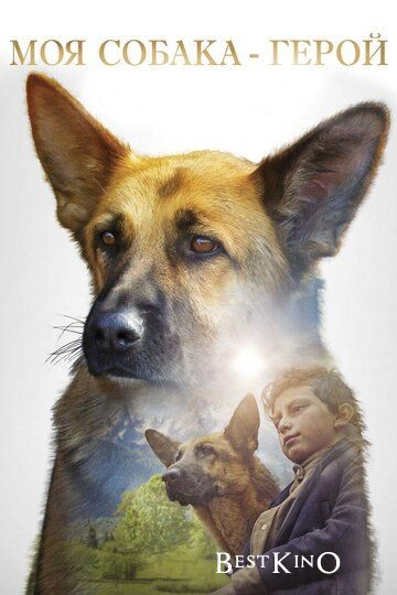 Моя собака — герой / Shepherd: The Story of a Jewish Dog (2019)
